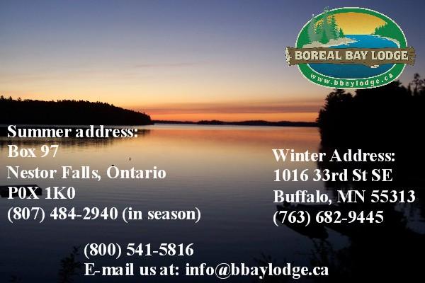 Boreal Bay Lodge near Nestor Falls Ontario Canada